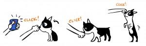 clicks and tricks